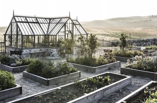 YOUR FIRST GARDEN: HOW TO START A GARDEN FOR PRACTICALLY NOTHING